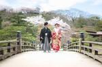 桜の彦根城で和装の前撮り|滋賀県彦根市にて