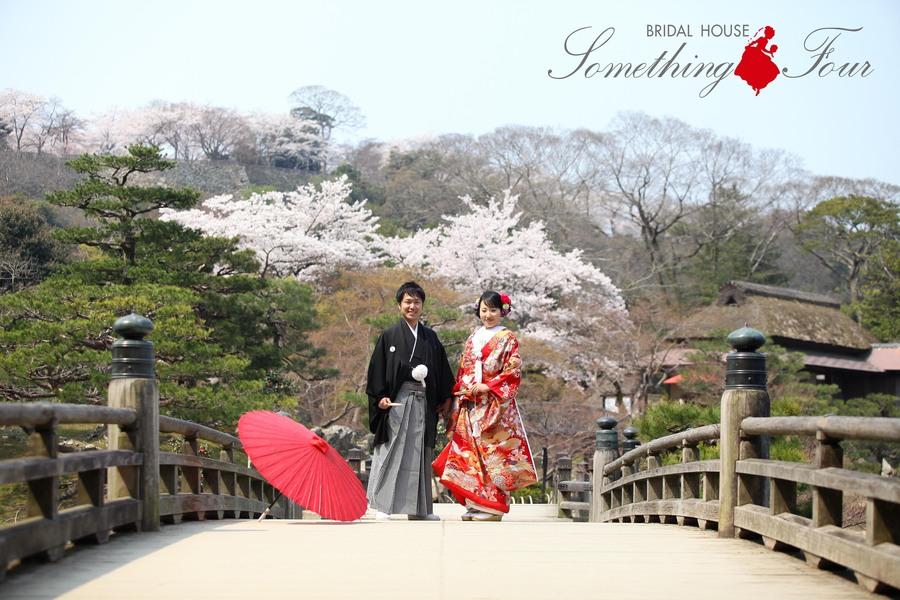 桜の季節に色打掛でブライダルフォト【滋賀県彦根城】