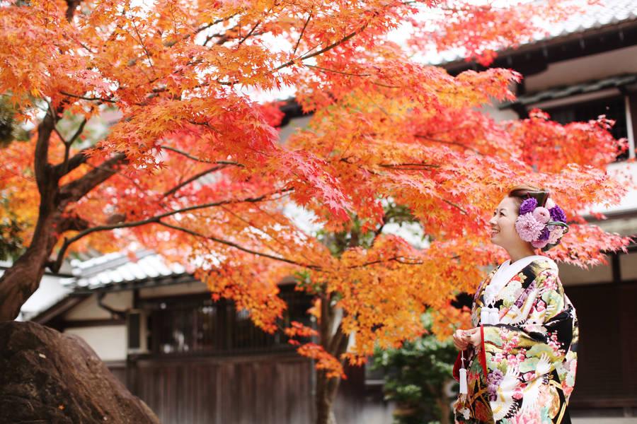 桜のシーズンに続き人気の紅葉シーズン!見惚れるくらいの紅葉との撮影はいかがですか?滋賀県彦根市本町