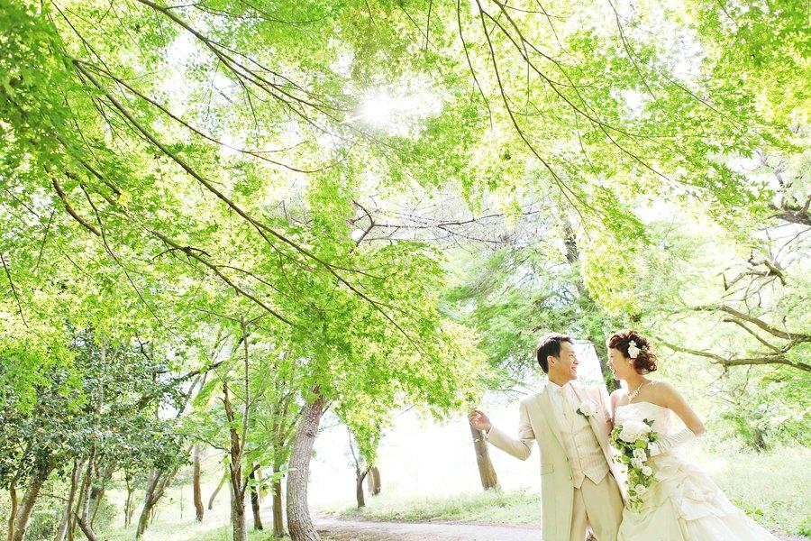 滋賀県 彦根で思い出に残る前撮りをしましょう!彦根市の穴場スポット曽根沼緑地公園