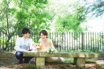 新緑シーズンにぴったりの撮影スポットをご紹介【滋賀県彦根市】