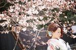 【限定】組数限定の桜ロケーションフォトプラン