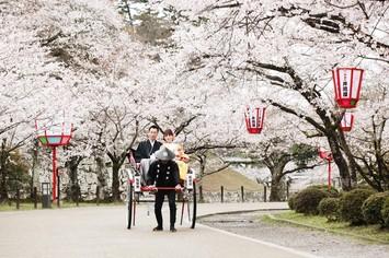 [必見]桜ロケーションフォトプラン