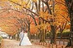 【お急ぎ下さい】紅葉シーズンにしか撮れないフォトウェディングの魅力