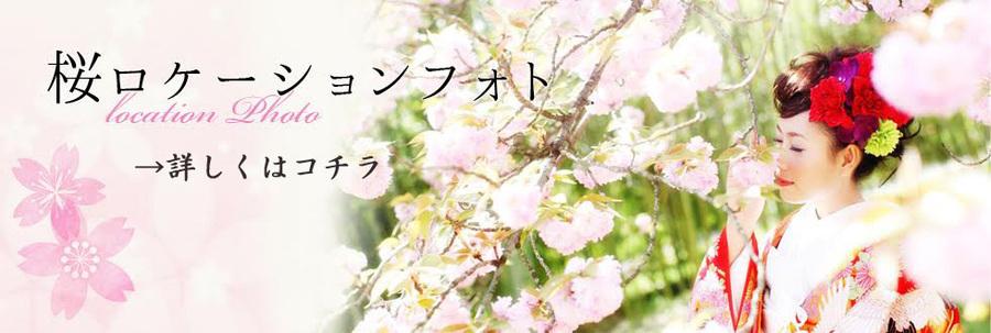 桜バナー.jpg